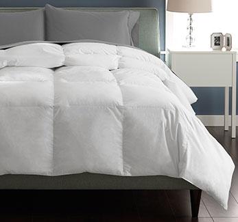 Great Sleep Comforters - Shop Now